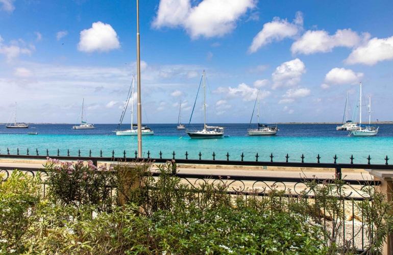 Oceanfront Elegancia del Caribe #2