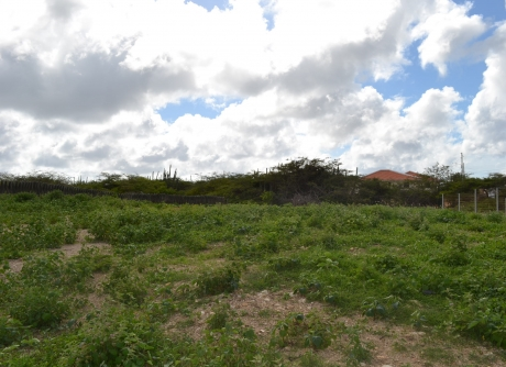 building lot Bonaire